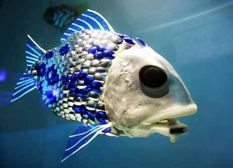 Odd Deep Sea Creatures Gallery Ebaum 39 S World