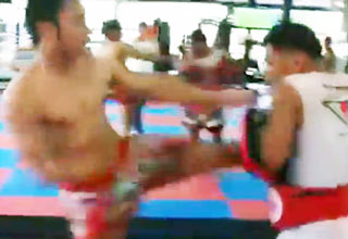 Muay Thai Kicking Machine