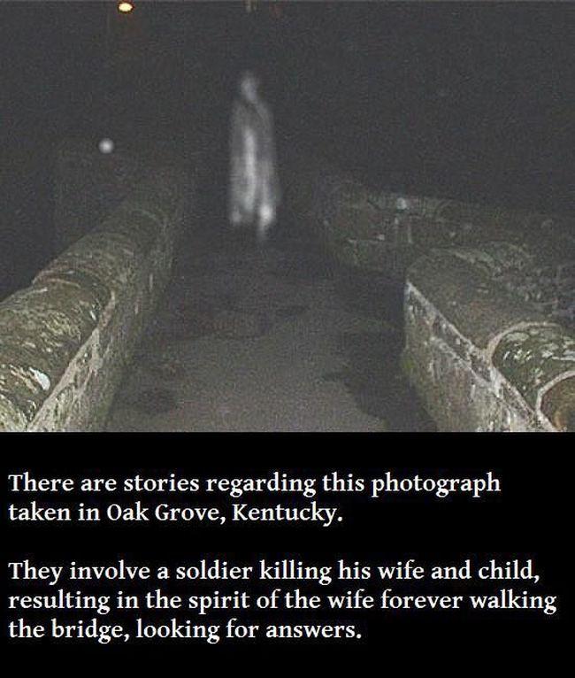 True stories of a sex stalker 2 5