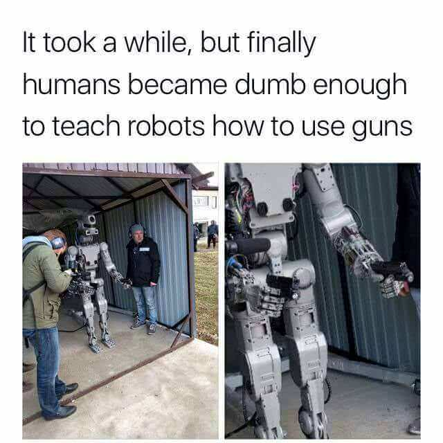 Giving the robot a gun seems like fairly obvious bad idea. Giving the robot TWO guns is deep madlad territory