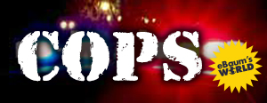 awesome collection of funny cops videos pictures galleries and gifs
