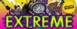 awesome collection of funny extreme videos pictures galleries and gifs