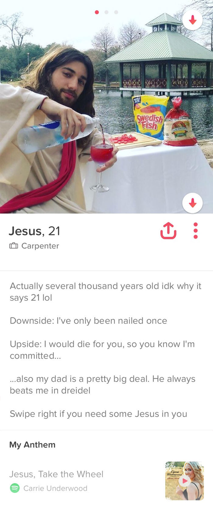 48 Of The Best Tinder Profiles Ever - Gallery | eBaums World