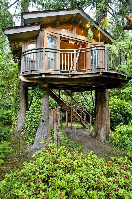 21 - 24 Badass Treehouses That'll Make You Feel Like A Kid Again