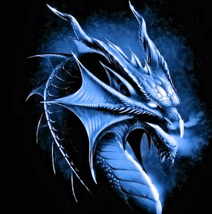 cool dragons set 1 gallery ebaum s world