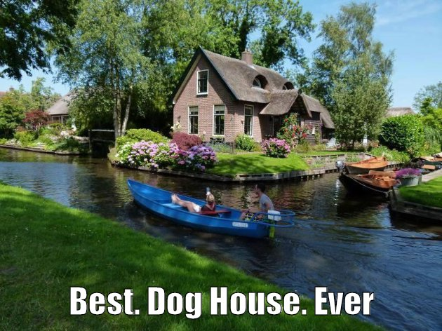 Best. Dog House. Ever ...