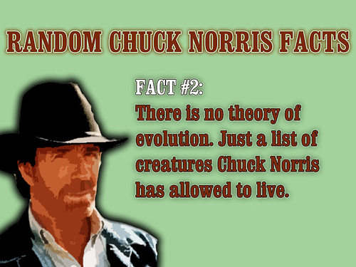 CHUCK NORRIS FACTS - G...