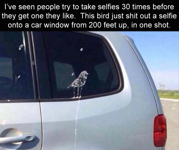 3 - 32 Fun Filled Photos That Will Make Your Weekend Better