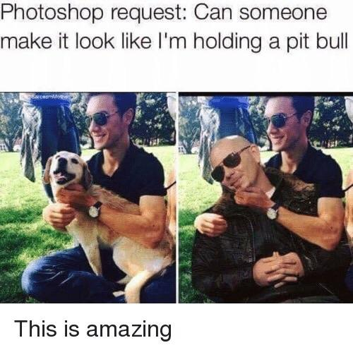 19 - Photoshop request to put a pitbull into a pic and they do the rapper, not a dog.