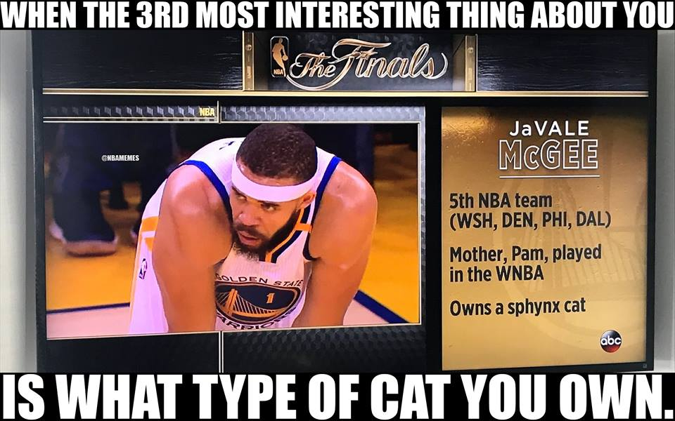 26 - Basketball player with fact that he owns a cat on screen.