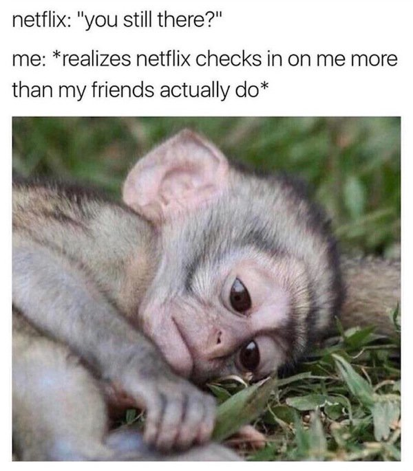 29 - Sad monkey meme when you realize Netflix checks on you more than friends.