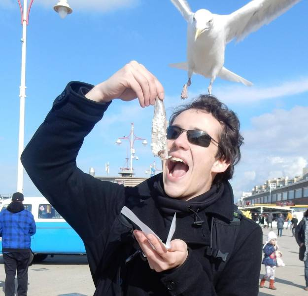 30 - Man about to eat some fish by the seaside and a seagull is about to snatch it.