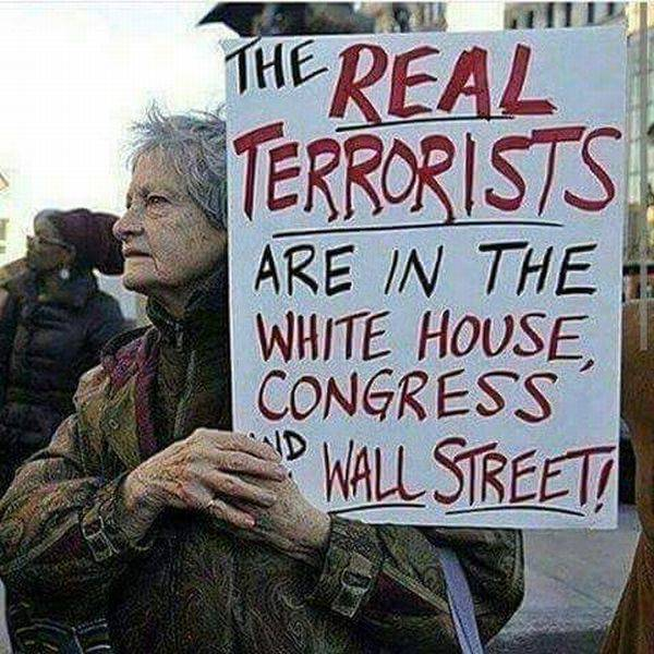 15 - Protestor calling the real terrorist the folks in the White House, congress and Wall Street