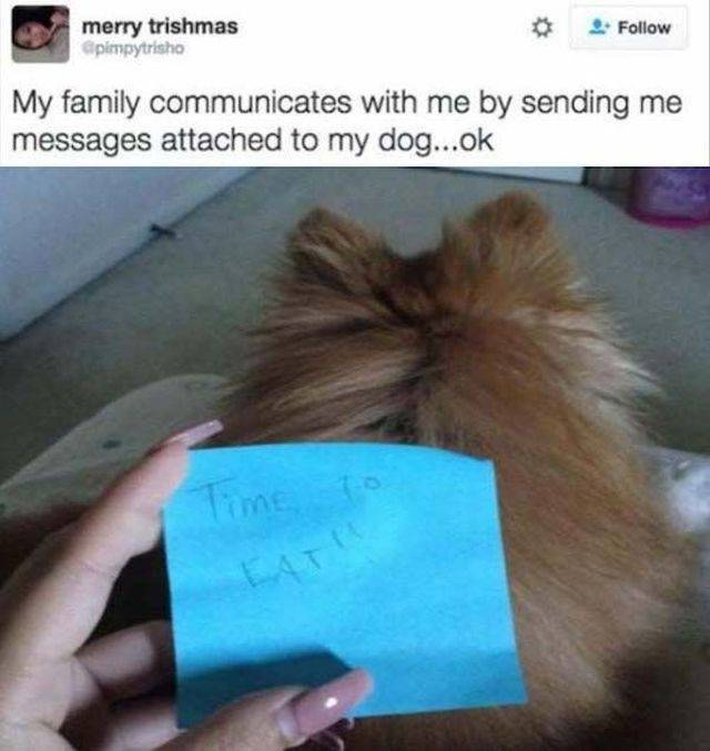 23 - 36 Funny Pictures To Laugh Your Humpday Away
