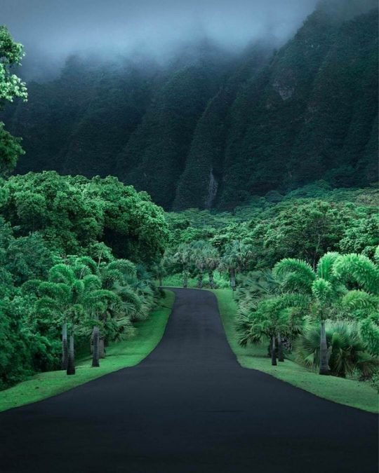9 - Anyone would love to drive this dreamy road in Hawaii.