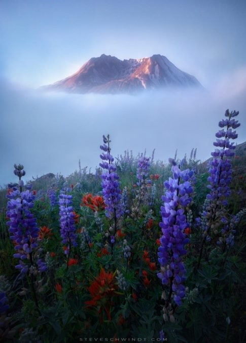 14 - This beautiful photo of Mount Saint Helens is hard to believe