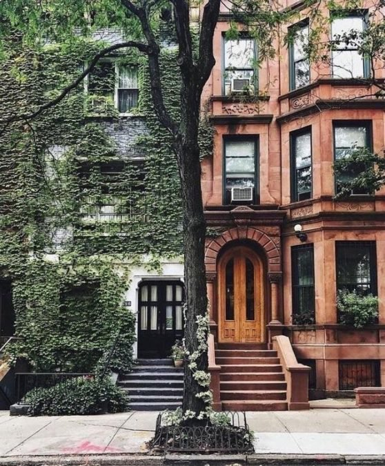 16 - A tree divides two very different but equally beautiful houses in New York.