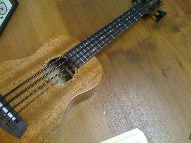 cool bass guitars gallery ebaums world