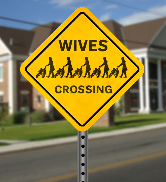 Hilarious Street Signs Funny Street Signs - G...
