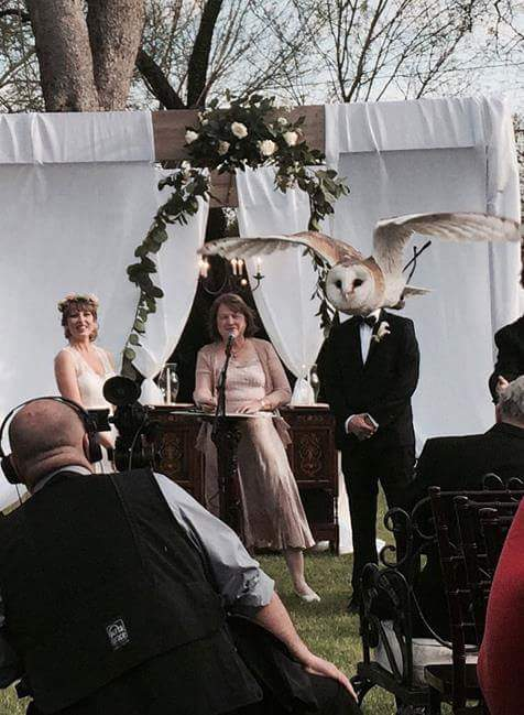13 - 18 Photos That Are The Epitome Of Perfect Timing