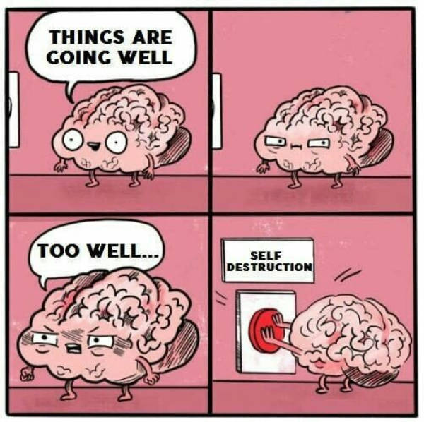 5 - Funny meme of how the brain wants to self destruct when things are going well.
