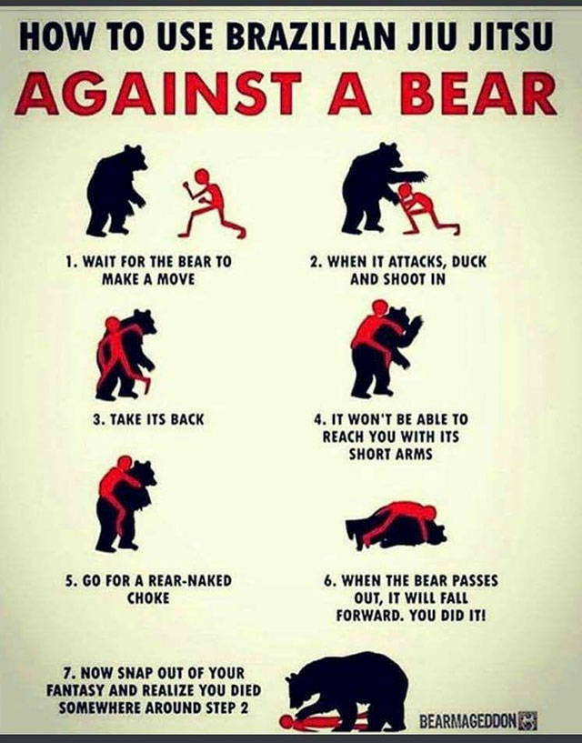 8 - Funny directions on how to do against an attack from a bear.