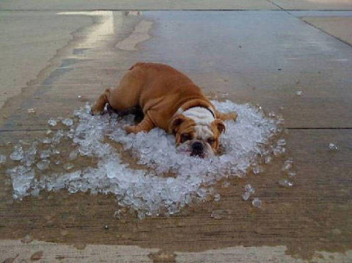 24 - 32 Ways To Cool Off During Summer