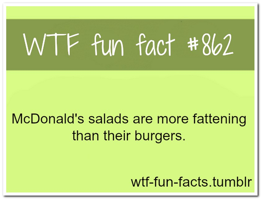Useless Facts Tumblr