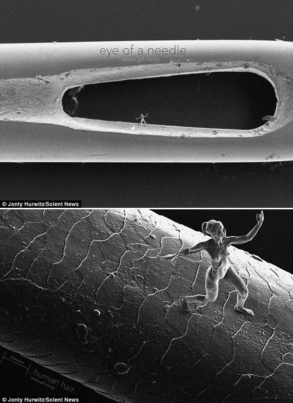 fascinating microscopic things gallery ebaum s world