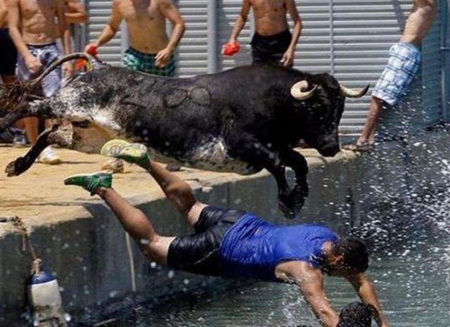 21 - A bull chasing reveller during the Bulls to the Sea festival in Denia, Spain.