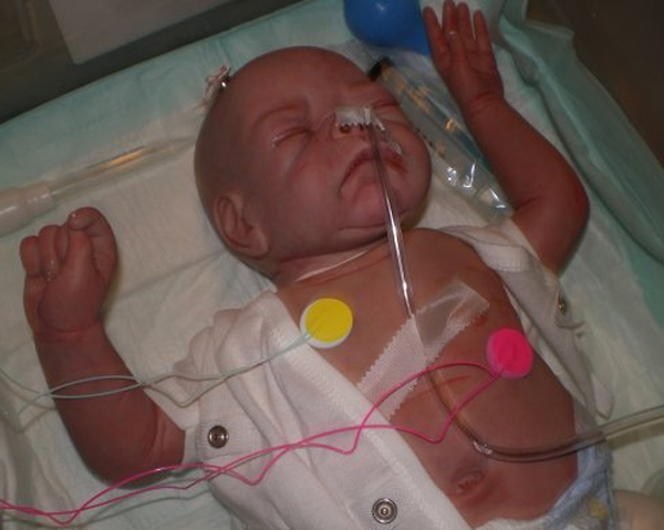 Creepy Reborn Baby Dolls Gallery Ebaum S World