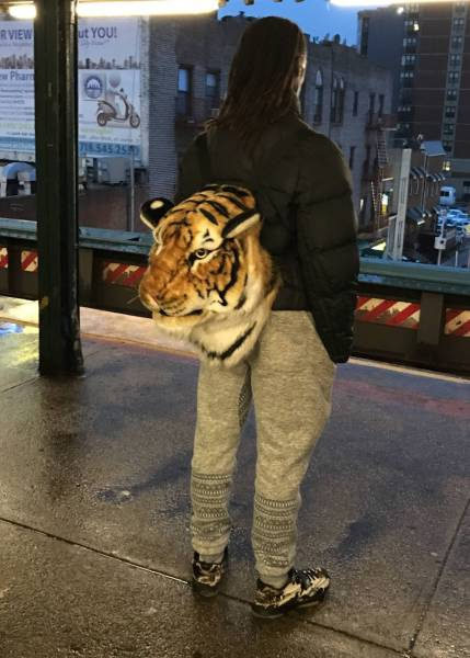 11 - Cool pic of someone wearing a tiger head shaped back pack.