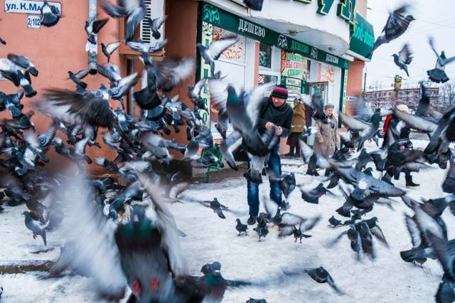 17 - Cool pics - Dude scares the pigeons to a blur.