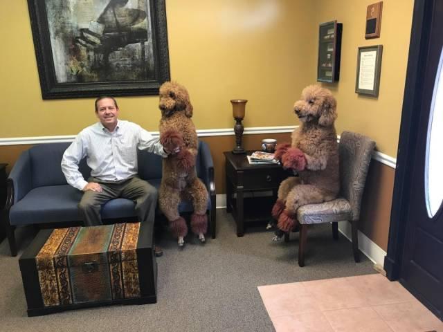16 - dogs at the vet sitting like good boys