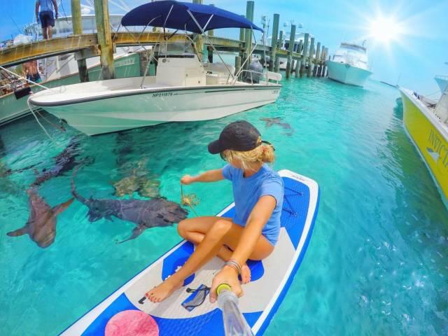 21 - woman feeding the sharks