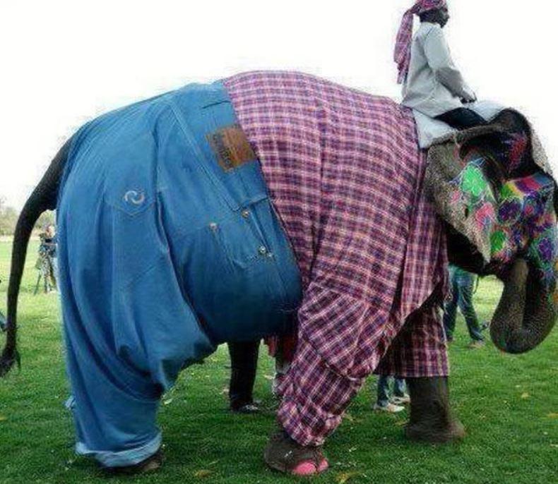 10 - Fashion Fail: Pants