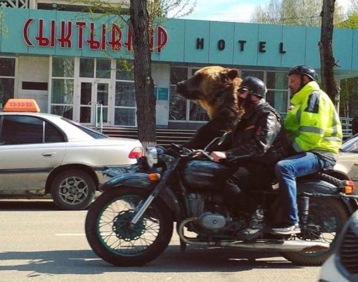 19 - Funny picture from Russia of motorcycle with two riders and a full grown bear.