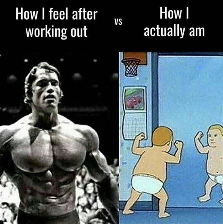 30 - Arnold Schwarzenegger meme of how it feels after working out vs how it actually looks.