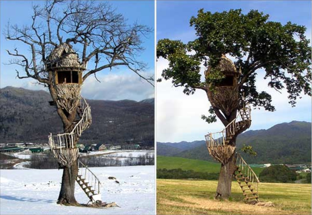 Smallest Tree House In The World interesting smallest tree house in the world content rating c