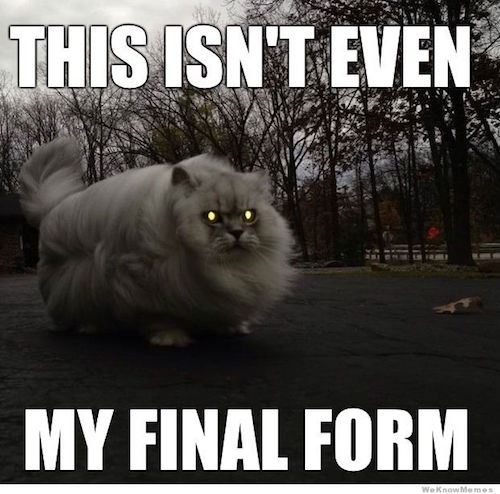 19 Funniest 'This Isn't Even My Final Form' Memes - Gallery ...