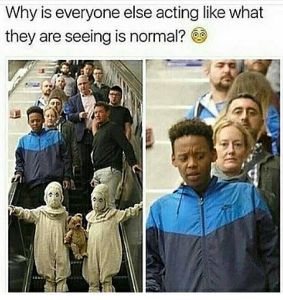 Of The Best Memes From Black Twitter Funny Gallery - 24 hilarious pictures will make day instantly better 9 best ever