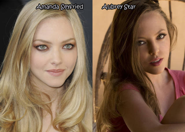 13 38 Celebrities And Their Porn Star Dopplegangers