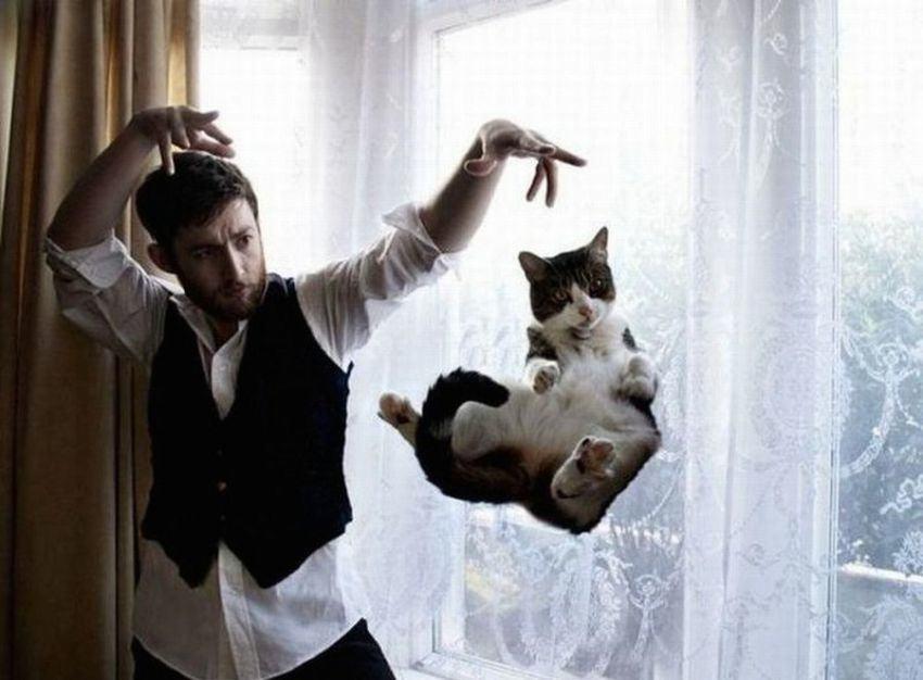 Lidojošie kaķi - Page 5 84461994
