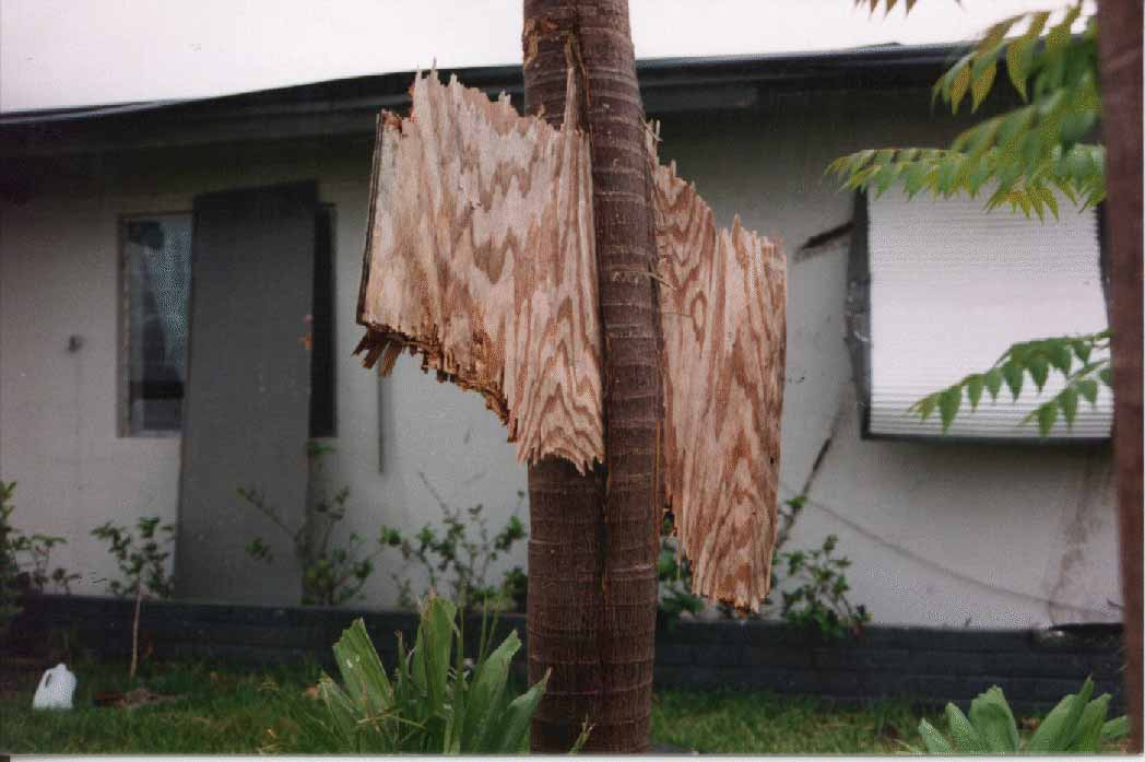 7 - The strength of Category 5 Hurricane winds. Hurricane Andrew 1992