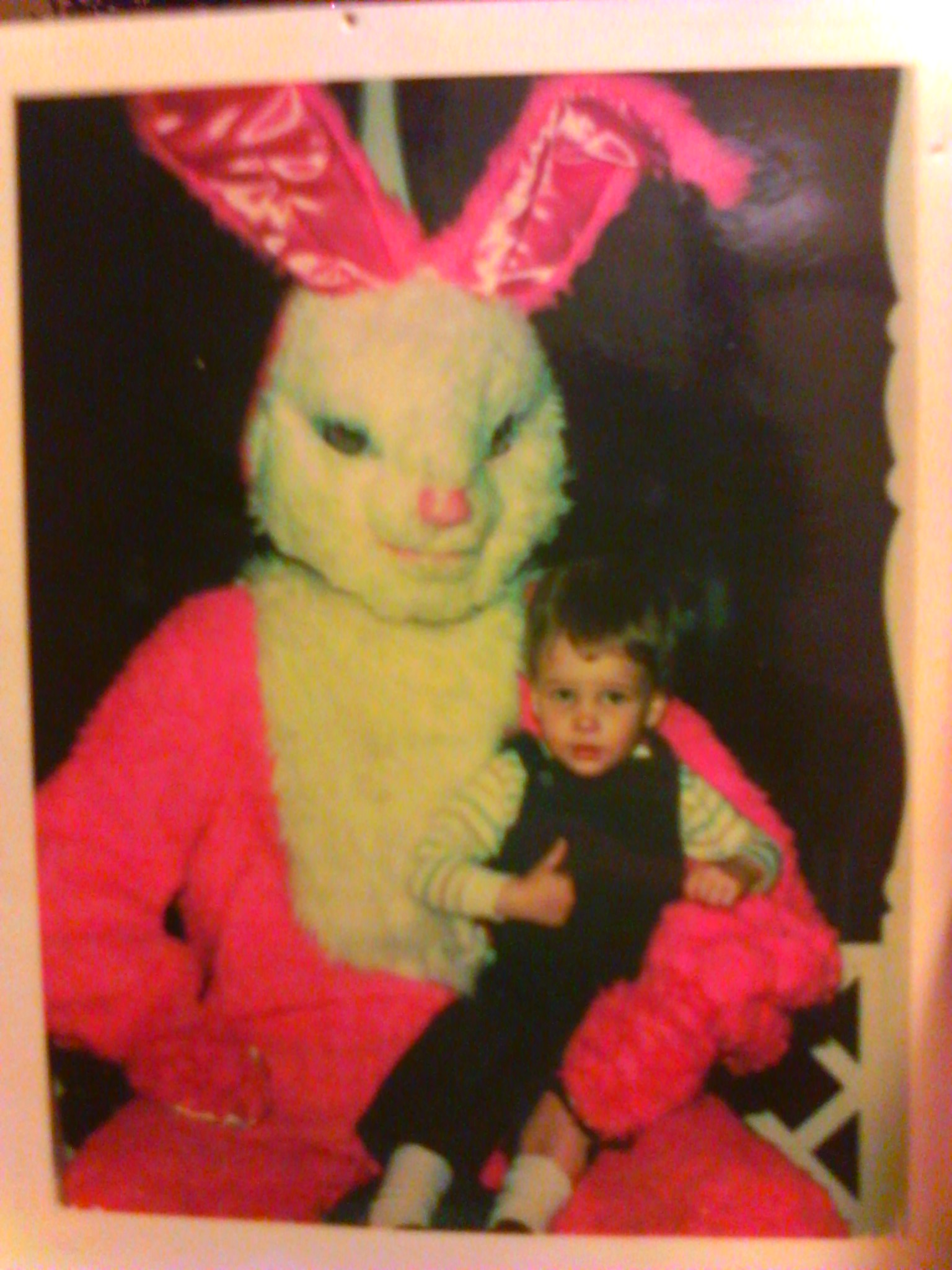 these easter bunnies scare the hell out of me gallery ebaum u0027s