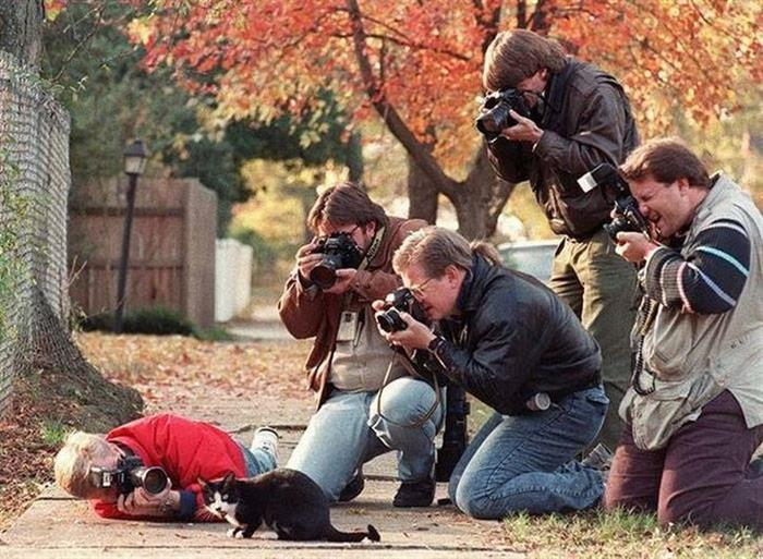 3 - 35 Photographers That Will Do Anything For The Perfect Shot