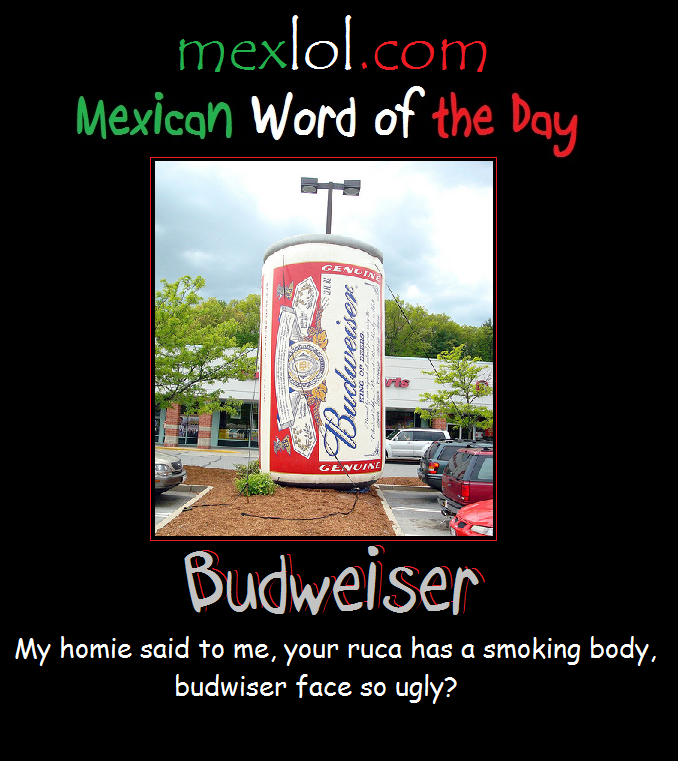 mexican word for the day mash up gallery ebaum s world