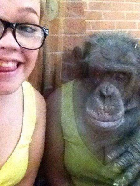 Of The Most Perfectly Timed Photos Gallery EBaums World - The 19 most perfectly timed selfies ever