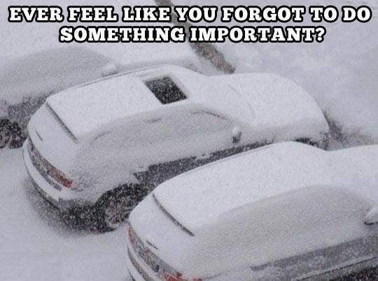 Funny Memes For Winter : 50 funniest winter memes of all time gallery ebaum's world