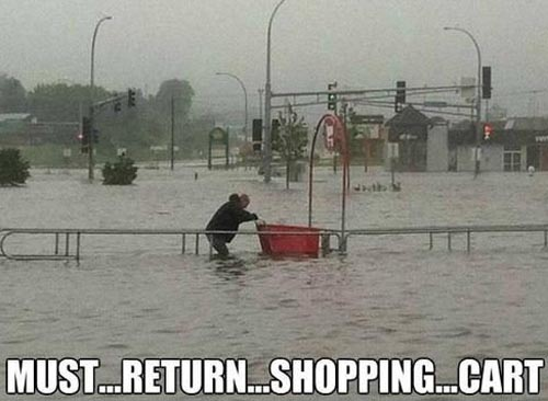Funny Picture Of Person Returning Shopping Cart In A Flood
